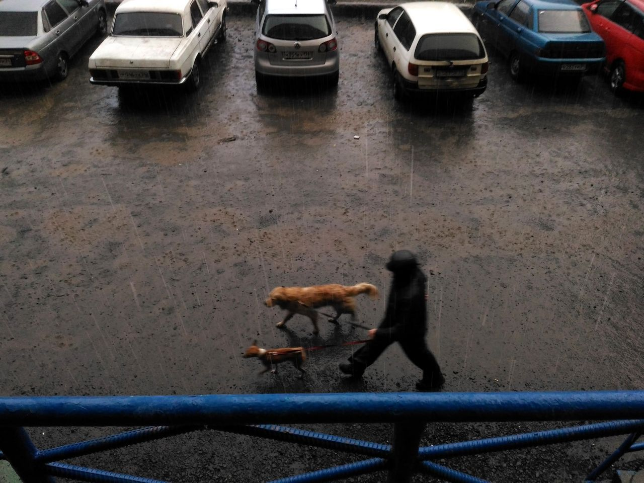 Urban Street Photography Norilsk