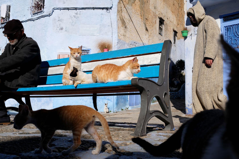 Street Photography Fabian Schreyer